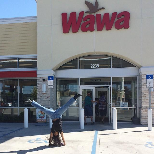 #Kadria going #woowoo! at the #Orlando #Wawa #Store5111 on N Semoran. #gottahaveaWawa #cartwheel #tradition #hotturkeygobbler #wawarocks #woowooattheWawa #open1inAtlanta #bestgasstationever #InviolateLovesTheWawa @wawa