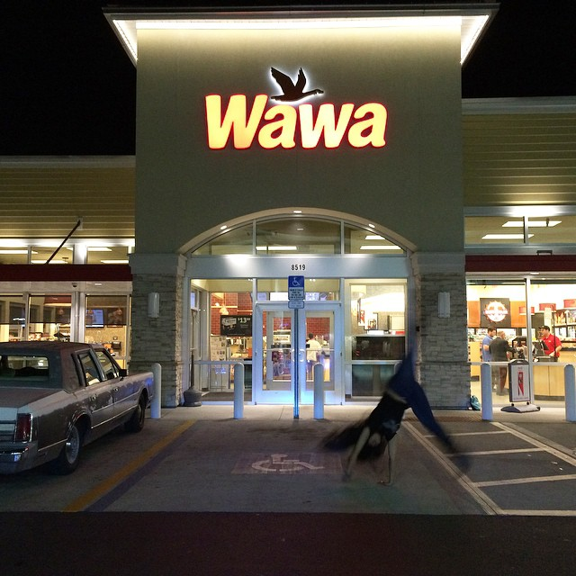 Twice in one day! #Kadria going #woowoo at the #PortRichey @wawa (store #5108)! #woowoo #wawarocks #build1inGeorgia #cartwheel #tradition #bestcoffee #besthoagies #bestgasstationever #InviolateHeartsWawa #florida